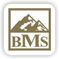 بی ام اس /  BMS