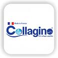 کلاژینو / collagino