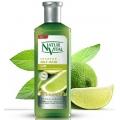 شامپو ضد حساسیت تقویتی موی چرب نچرال ویتال